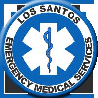 LS EMS